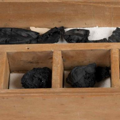 Box of carbonised fruits from Herculaneum
